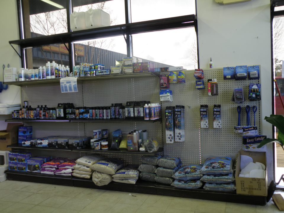 Supplies 910 792 6003 for Salt water fish stores
